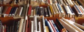 Separar el gra de la palla: la col·lecció de la biblioteca, amb Margarida Casacuberta(09/02/2016)